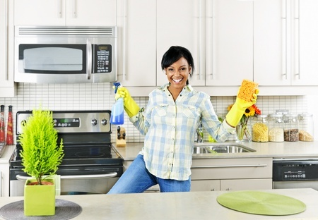 Having Company For the Holidays? Easy Helpful Tips to get your Home Clean before Company arrives!!!