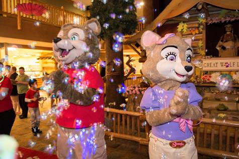 plan your spring getaway at great wolf lodge