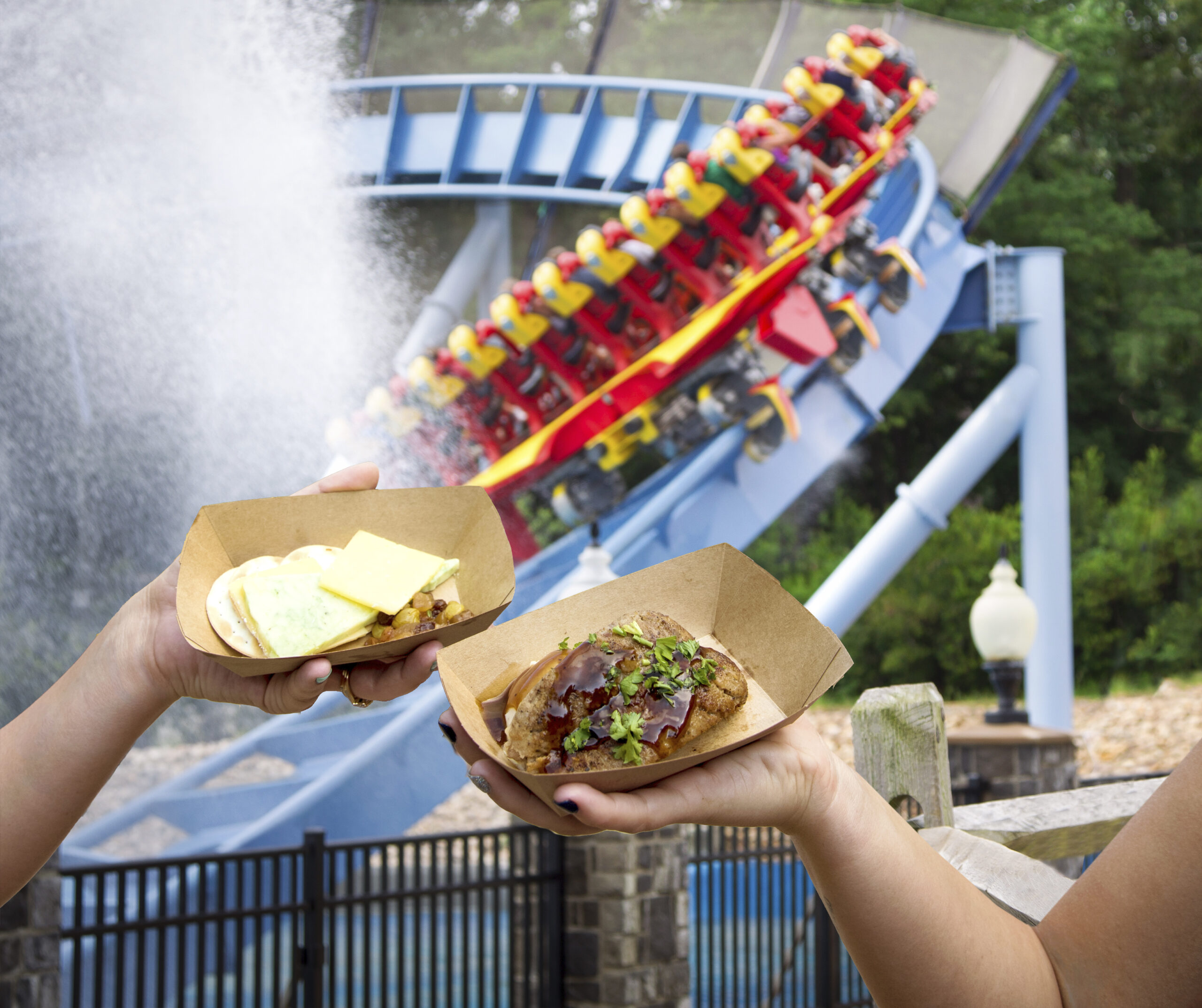 Experience Food From Around The World At Taste of Busch Gardens!