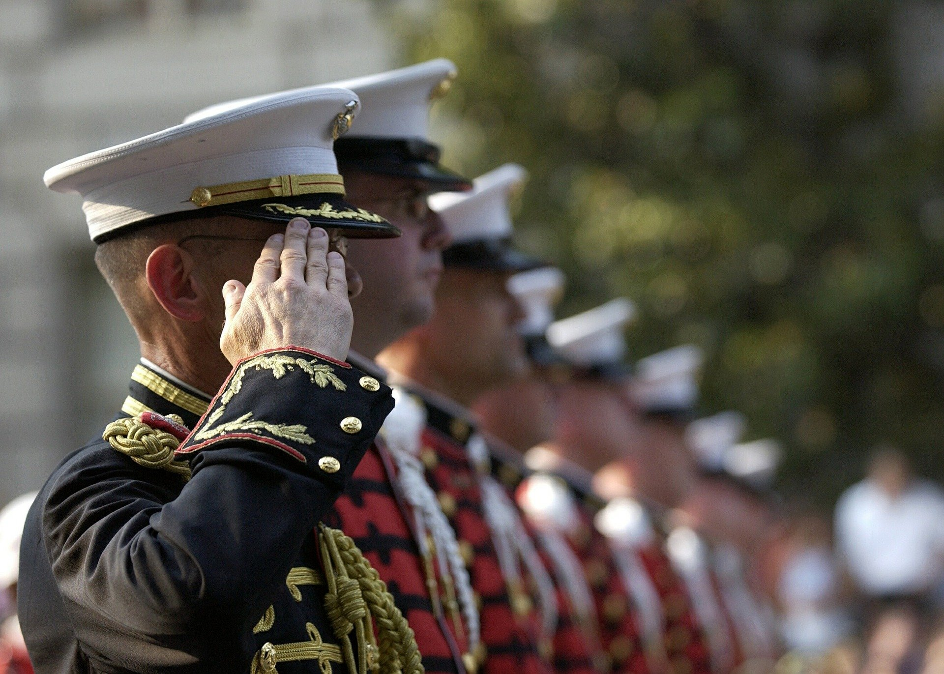 Veterans Day Free Meals and Deals for 2020