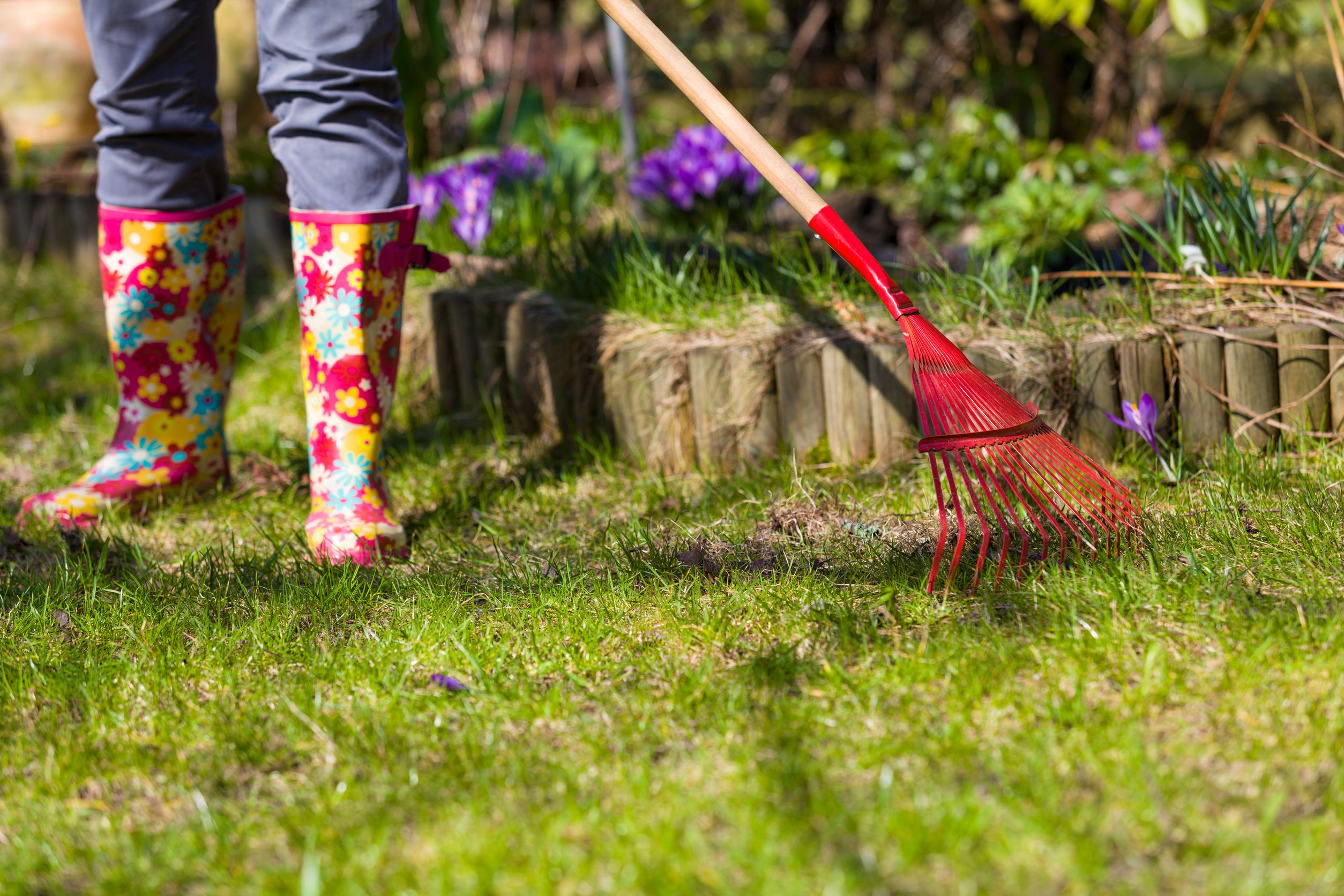 Outdoor Spring Cleaning and Maintenance Tips